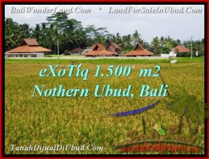 Magnificent LAND FOR SALE IN UBUD TJUB488