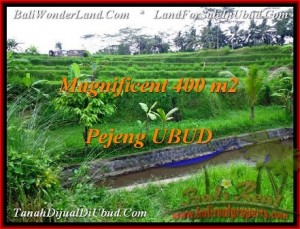 Magnificent PROPERTY Ubud Pejeng 400 m2 LAND FOR SALE TJUB483