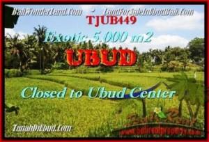 Exotic 5.000 m2 LAND SALE IN UBUD TJUB449