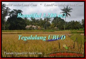Exotic PROPERTY LAND IN UBUD FOR SALE TJUB463
