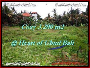 Exotic 3,200 m2 LAND SALE IN UBUD BALI TJUB510