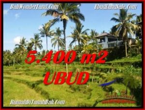 Exotic 5,400 m2 LAND IN UBUD BALI FOR SALE TJUB550