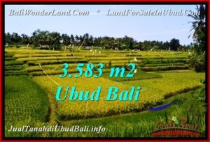 Exotic PROPERTY 3,583 m2 LAND IN Ubud Pejeng FOR SALE TJUB542