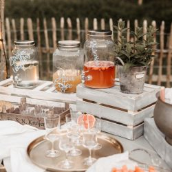 Limobar mit Getränkespendern, Melonenspießen und Lutscheis
