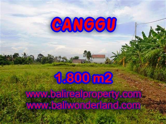Land in Bali for sale, fantastic view in Canggu Bali – TJCG134