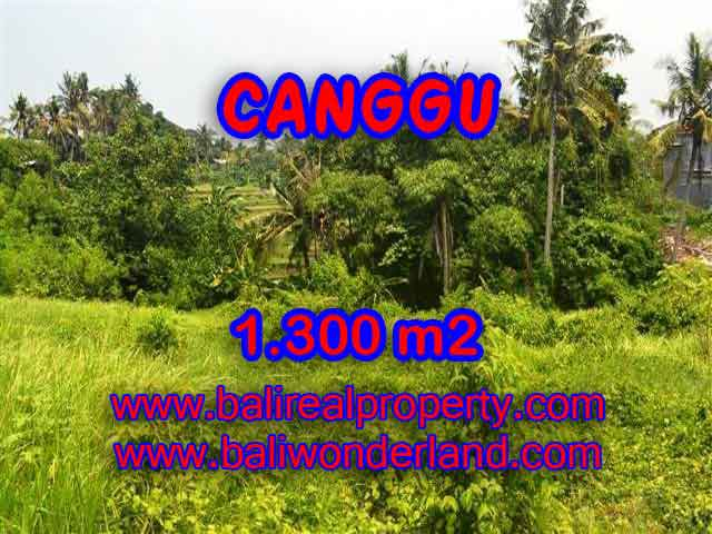 Land for sale in Bali, Fantastic view in Canggu Batu bolong – TJCG136