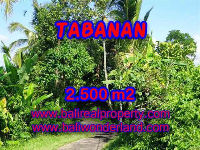 Land for sale in Tabanan, Magnificent view in Tabanan Penebel Bali – TJTB122
