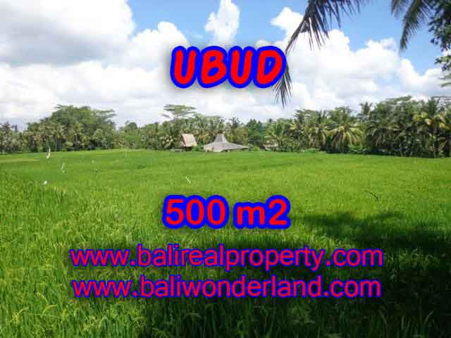 Stunning Land for sale in Bali, Ricefields view in Ubud Bali - TJUB402