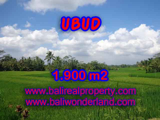 Land for sale in Bali, magnificent view Ubud Bali – TJUB403