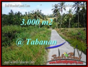 Beautiful TABANAN BALI 3,000 m2 LAND FOR SALE TJTB205
