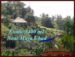 FOR SALE Affordable PROPERTY 3,400 m2 LAND IN UBUD BALI TJUB514