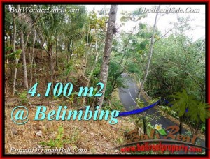 Magnificent PROPERTY 4,100 m2 LAND IN Tabanan Selemadeg FOR SALE TJTB218