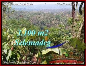 FOR SALE Exotic LAND IN Tabanan Selemadeg BALI TJTB222