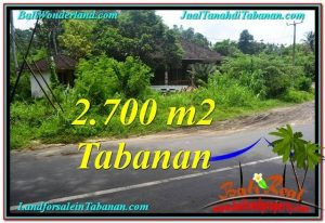 Magnificent 2,700 m2 LAND IN TABANAN BALI FOR SALE TJTB299