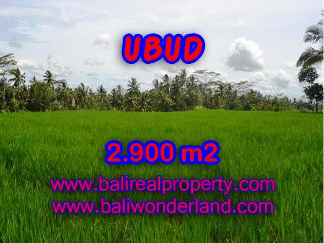 Land for sale in Ubud Bali, Astounding view in Ubud Payangan – TJUB356