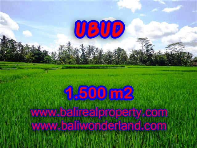 Land in Bali for sale, attractive view in Ubud Center Bali – TJUB383