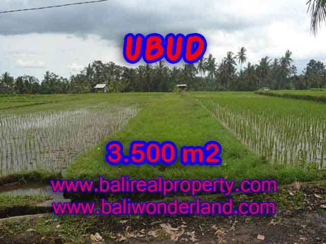 Land for sale in Bali, magnificent view Ubud Bali – TJUB395