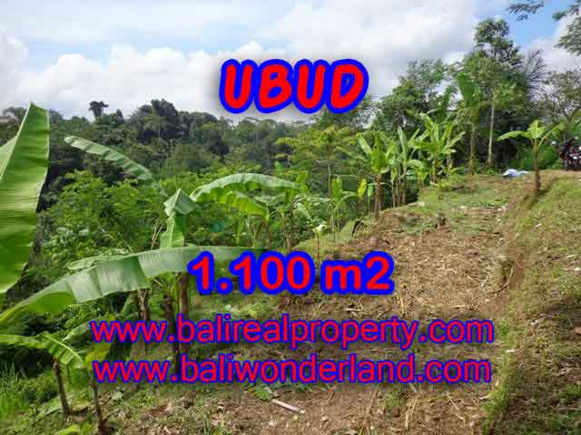 Property in Bali for sale, Astonishing land for sale in Ubud Bali – TJUB407