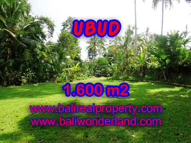 Spectacular Property for sale in Bali, land for sale in Ubud Bali – TJUB416