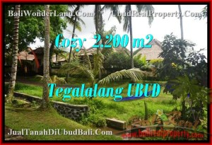 Affordable Ubud Tegalalang LAND FOR SALE TJUB462