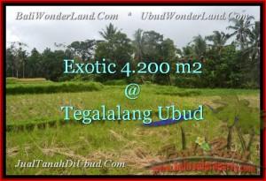 FOR SALE Beautiful LAND IN Ubud Tegalalang BALI TJUB461