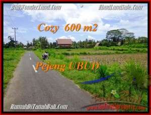 FOR SALE Magnificent PROPERTY 600 m2 LAND IN UBUD BALI TJUB465