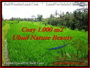 Beautiful UBUD BALI 1,000 m2 LAND FOR SALE TJUB478
