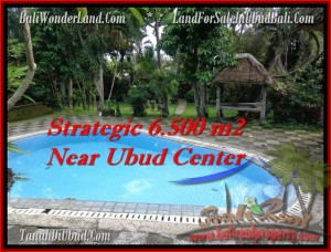 Beautiful UBUD BALI 6,500 m2 LAND FOR SALE TJUB479
