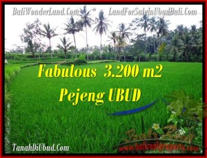 Affordable 3,200 m2 LAND IN UBUD FOR SALE TJUB484