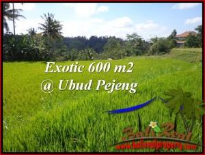 FOR SALE Affordable PROPERTY LAND IN Ubud Tampak Siring BALI TJUB513