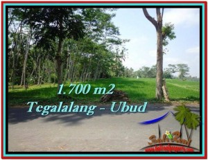 Magnificent 1,700 m2 LAND FOR SALE IN UBUD BALI TJUB518