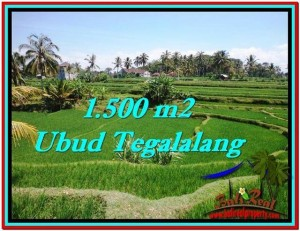Exotic PROPERTY LAND FOR SALE IN UBUD TJUB528