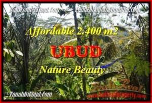 Beautiful PROPERTY 2.400 m2 LAND IN UBUD BALI FOR SALE TJUB454
