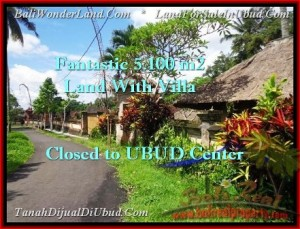 Exotic LAND SALE IN Ubud Pejeng BALI TJUB468