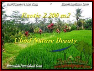 FOR SALE 2,200 m2 LAND IN UBUD TJUB480