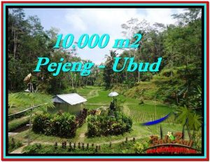 Magnificent PROPERTY LAND FOR SALE IN UBUD BALI TJUB519