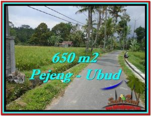 Beautiful 650 m2 LAND IN Ubud Tampak Siring FOR SALE TJUB522