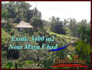 FOR SALE LAND IN Ubud Tengkulak BALI TJUB514