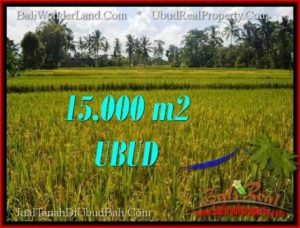 Magnificent PROPERTY UBUD LAND FOR SALE TJUB551