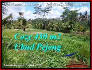 450 m2 LAND SALE IN UBUD TJUB535