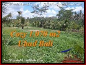 FOR SALE Affordable 1,070 m2 LAND IN UBUD TJUB536