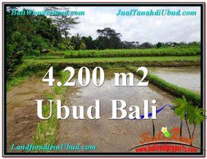 Affordable 4,200 m2 LAND FOR SALE IN UBUD BALI TJUB561