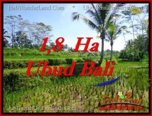 Exotic 16,000 m2 LAND IN UBUD BALI FOR SALE TJUB553