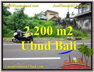 Beautiful 2,200 m2 LAND SALE IN UBUD BALI TJUB565
