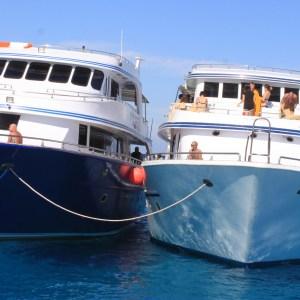 Excursion de plongée en apnée à Tiran de Charm el-Cheikh