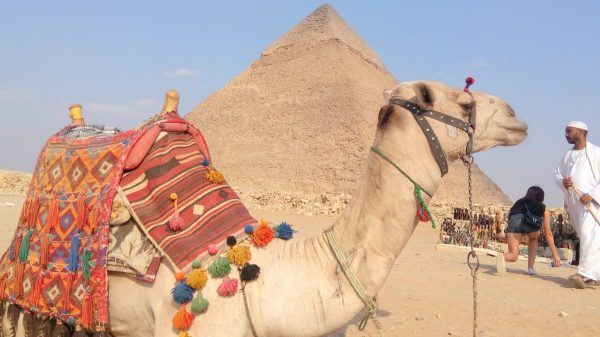 Excursion to Cairo from Sharm El Sheikh: photo of the pyramid of Menkaure