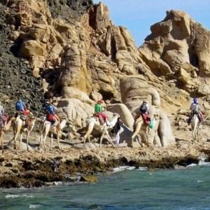 رحلة أبو جالوم و الثقب الأزرق من شرم الشيخ