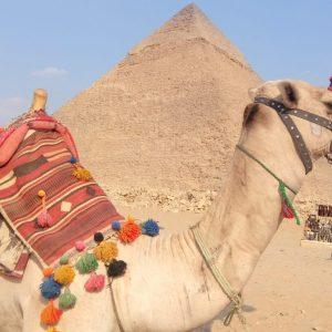 رحلة إلى القاهرة - الجيزة من شرم الشيخ