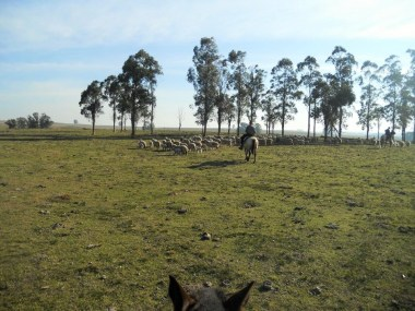 horseback uruguay
