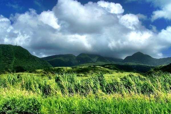 Green St Kitts